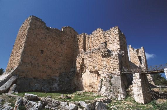 Day 2, Amman/ Jerash/ Ajlun/ Um Qais/ Amman picture
